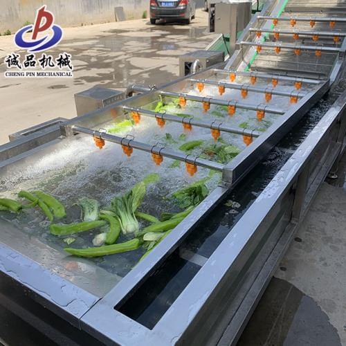 大型不锈钢果蔬气泡清洗机 鱼类多功能节能环保型气泡清洗机