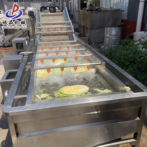 商用鲜果酱菜清洗机 荠菜苦菊气泡清洗机 臭氧去农残洗菜机流水加工