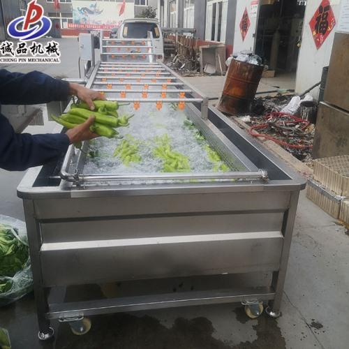 全自动果蔬提升机流水线 高效药材气泡冲浪清洗机 酱菜气浴清洗机